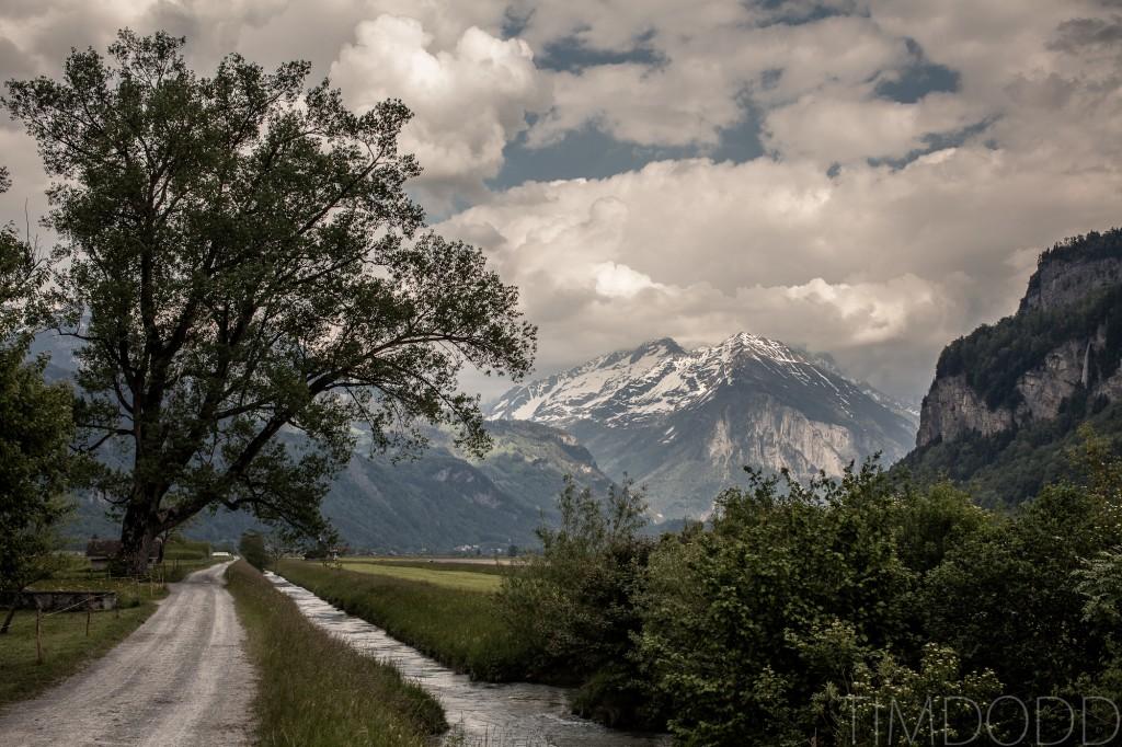 Scharlwald, Switzerland